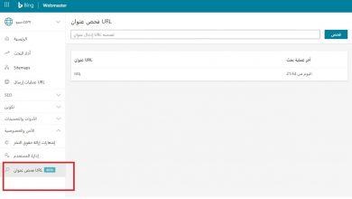 صورة أداة جديدة في أدوات مشرفي المواقع بينج لفحص الروابط