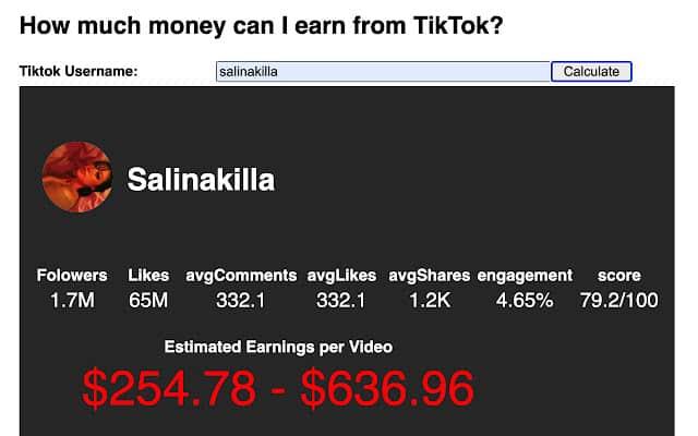 حاسبة أرباح حساب تيك توك