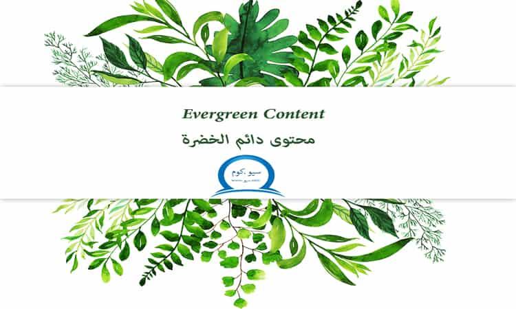 محتوى Evergreen Content دائم الخضرة